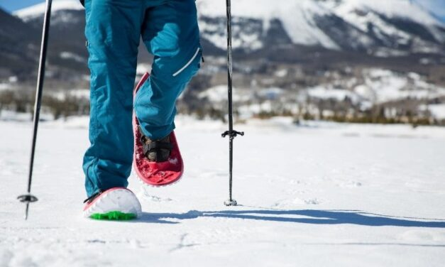 Buyer's Guide – Cross Country Ski and Snowshoe Gear