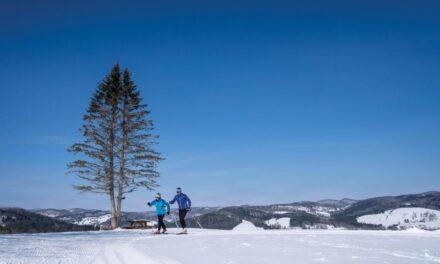 Vermont Ski Areas We Love!!